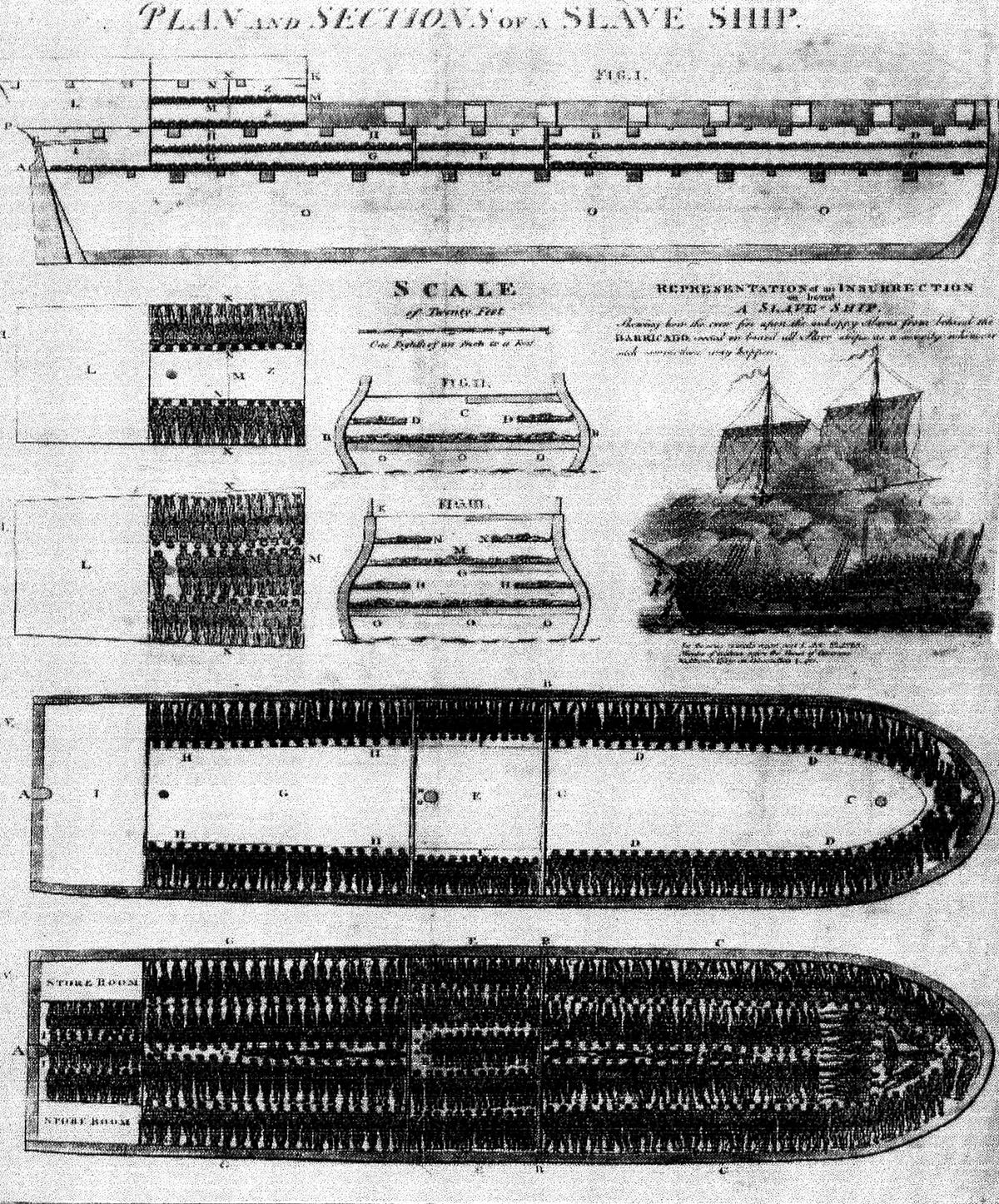 an overview of the conditions on the boats during the middle passage Slave ship diagram slave ships and the middle passage contributed by brendan wolfe the slave ship was the means by which nearly 125 million enslaved africans were transported from africa to the americas between 1500 and 1866 leaving from its home port in europe, a typical ship made its first passage to the west coast of africa, trading goods for a full cargo of slaves—people who had.